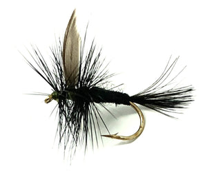 Black Gnat Dry Flies - One Dozen Flies - Sizes 10 - 20