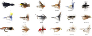 Wet and Dry Fly Fishing Assortment - 36 Flies in 18 Patterns - Bead Head, Wooly Bugger, Adams, and More
