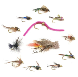 Fly Fishing Assortment - 72 Flies in 12 Trout Crushing Wet Patterns (Prince, Hopper, Pheasant Tail, and More) 3 Sizes