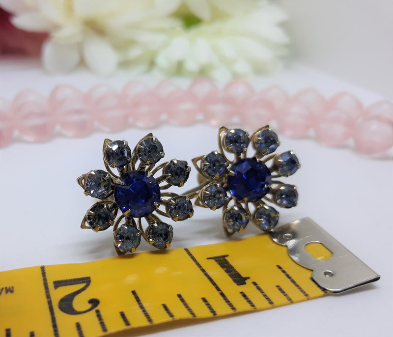 Stunning Blue and Crystal Blue Rhinestone Floral Screw Back Earrings