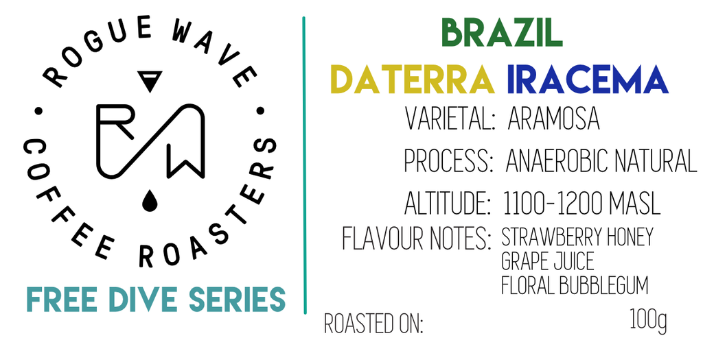 Brazil Iracema - Aramosa - Anaerobic Natural - Pre-Order - Shipping April 14