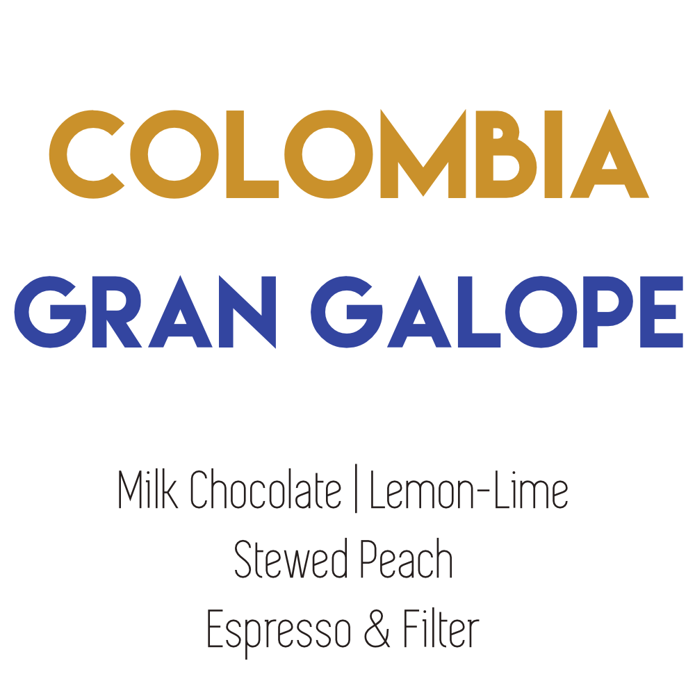 Colombia - Gran Galope - Washed