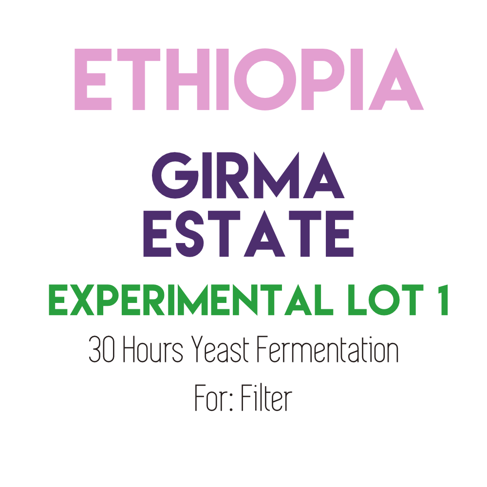 Ethiopia Girma Eshetu Estate - 30 Hours Yeast Fermentation Lot 1