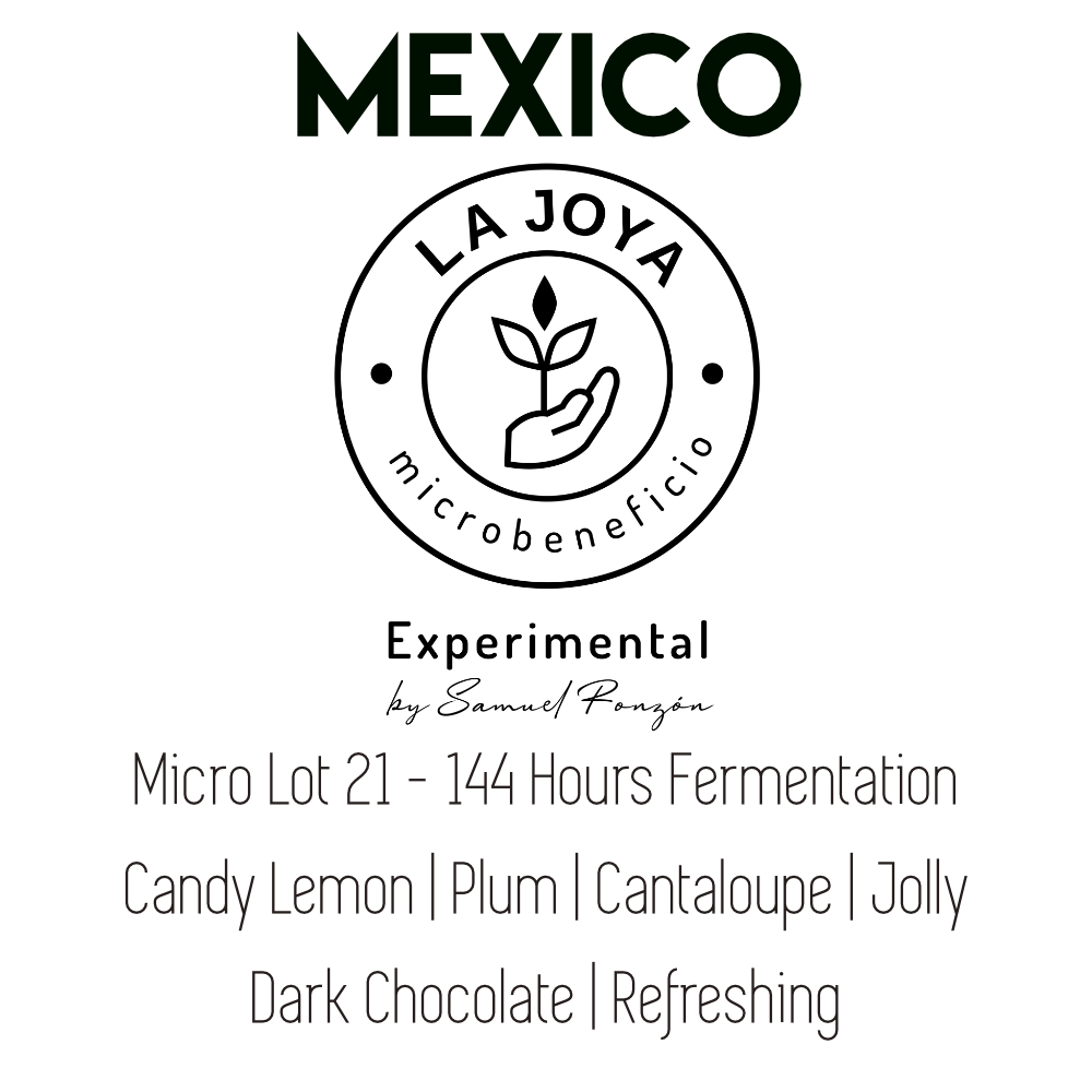 Mexico La Joya Lot 21 - Typica | 144 Hours Fermentation Natural - PRE-ORDER for SEPT 30