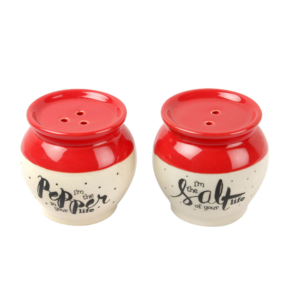 Matka Salt Pepper Shaker