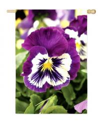 Pansies Garden Flag,  #14813