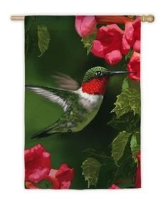 Hummingbird Closeup Garden Flag,  #zthd141634