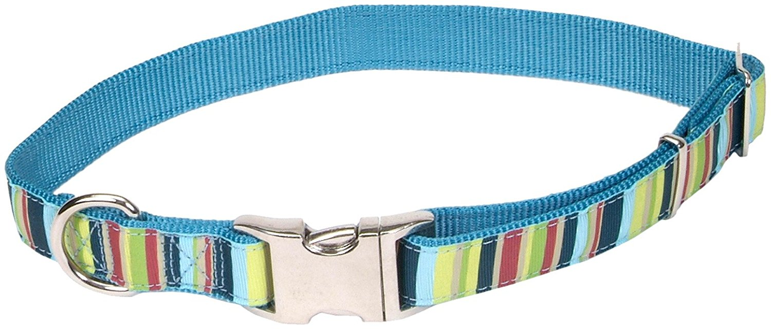 "Ribbon Multicolor Dog Collar, Medium, 12""-18"""