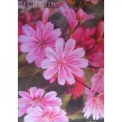 Welcome Pink Flowers Garden Flag,  #05988