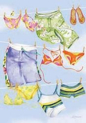 Board Shorts and Bikinis Garden Flag, #0263fm
