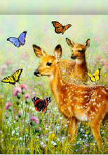 Fawn and Butterflies House Flag, #0563FL