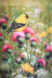 Goldfinch Thistle Garden Flag,  #0279fm