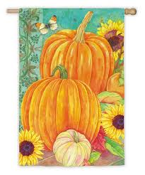 Pumpkin Medley House Flag,  #13A2641