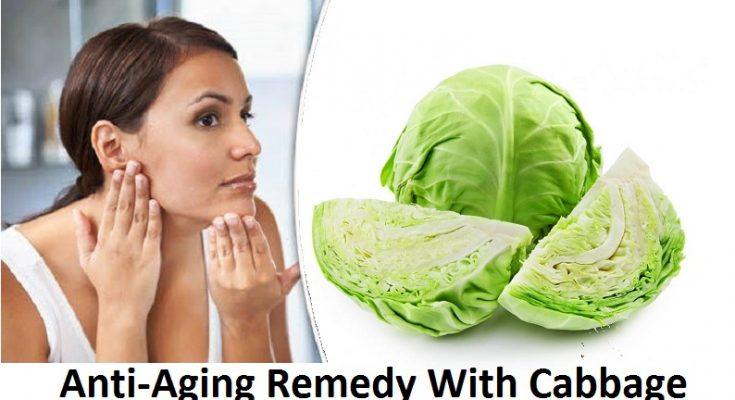 Amazing Natural Anti Aging Remedy With Cabbage At Home Pbc