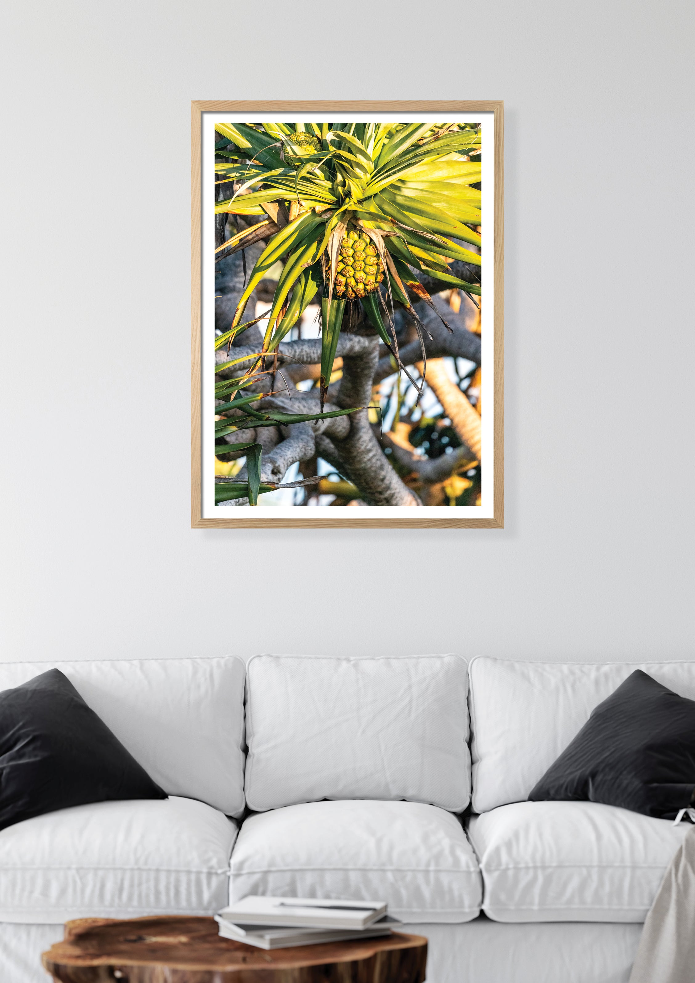 Coastal photography art print - Crescent Head, NSW Australia