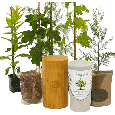 Bambo Eco-Friendly Urn & Planting System - Small