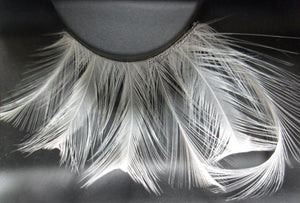 F147 Premium Feather Lashes
