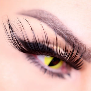 "W947 ""Queenie"" Wild Color Lash"