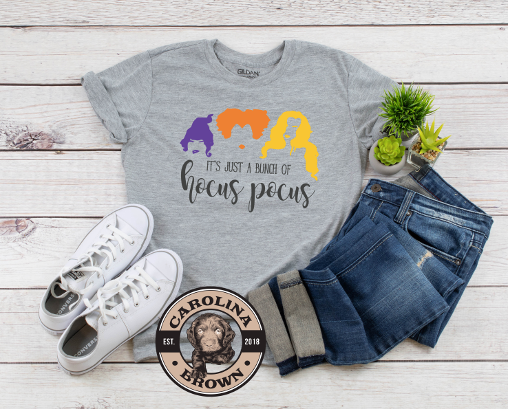 Just A Little Hocus Pocus t-shirt