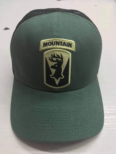 86th Infantry Brigade Combat Team - Mountain