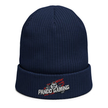 Load image into Gallery viewer, Pando Gaming Organic ribbed beanie