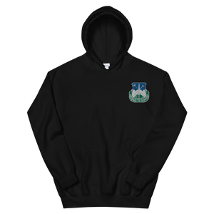 Ascend To Victory Embroidered Hoodie