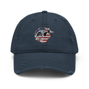 USA Pando Commando Distressed Dad Hat