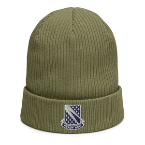 Ready Now (1-89 CAV) Organic ribbed beanie