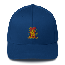 Load image into Gallery viewer, Golden Dragon Structured Twill Cap