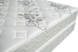 "ELBERTYNA 8"" TIGHT TOP MATTRESS (NON-FLIP)  DM331"