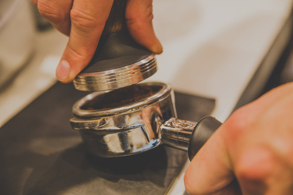 Entry Course - Merito Coffee Roasters