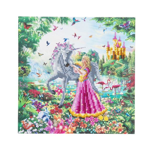 """The Princess & The Unicorn "" Framed Crystal Art Kit 30 x 30cm (Medium)"