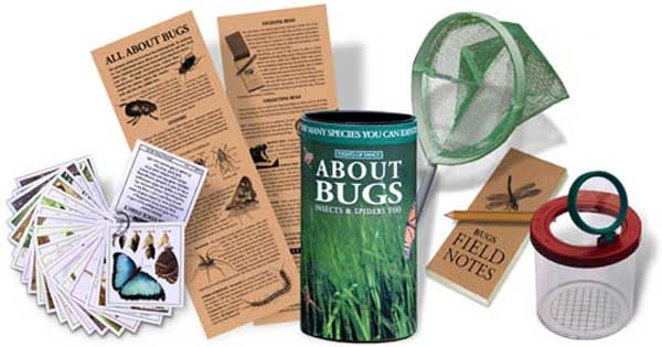 All About Bugs Activity Kit