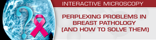 Perplexing Problems in Breast Pathology (and How to Solve them) 2020