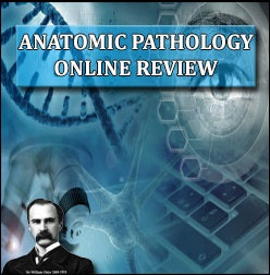 Anatomic Pathology 2018 Online Review