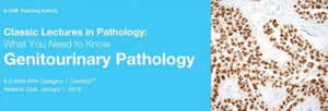 Classic Lectures in Pathology: What You Need to Know: Genitourinary Pathology 2019