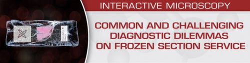 Common and Challenging Diagnostic Dilemmas on Frozen Section Service 2020