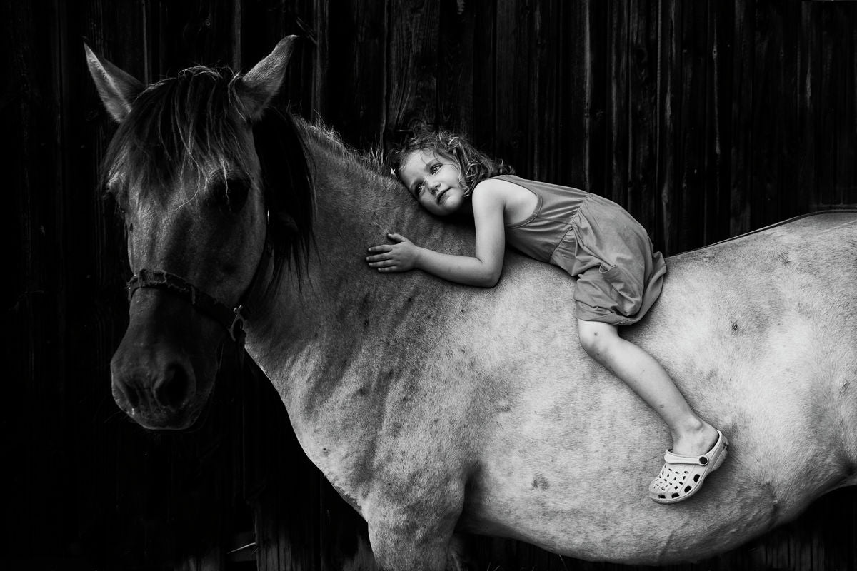 The horse and the little girl