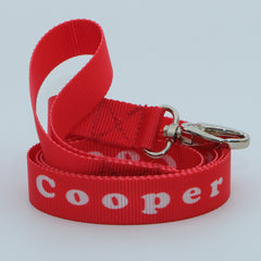 Personalised Dog Lead + Collar