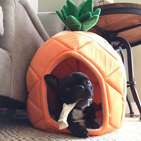 Pineapple Puppy Bed