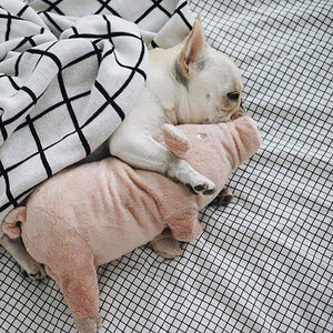 Pink Pig Dog Toy - Snuggle Buddies