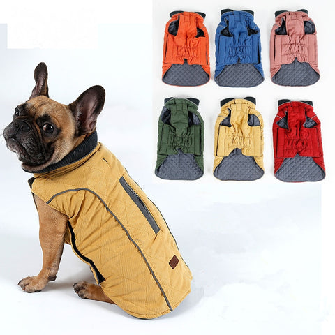 Image of Brisk French Bulldog Winter Coat