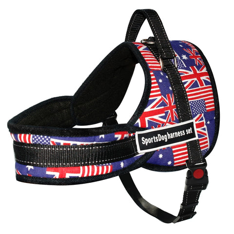 Nylon Dog Halter Harnesses