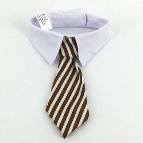 Image of Adorable Frenchie Tie