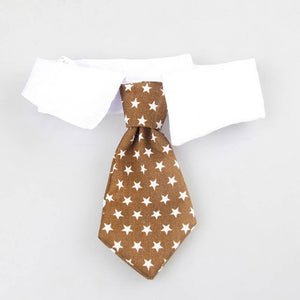 Adorable Frenchie Tie