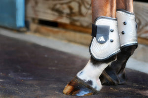 Fenwick Front Tendon and Hind Ankle Boots
