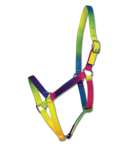 Rainbow Halter by Waldhausen