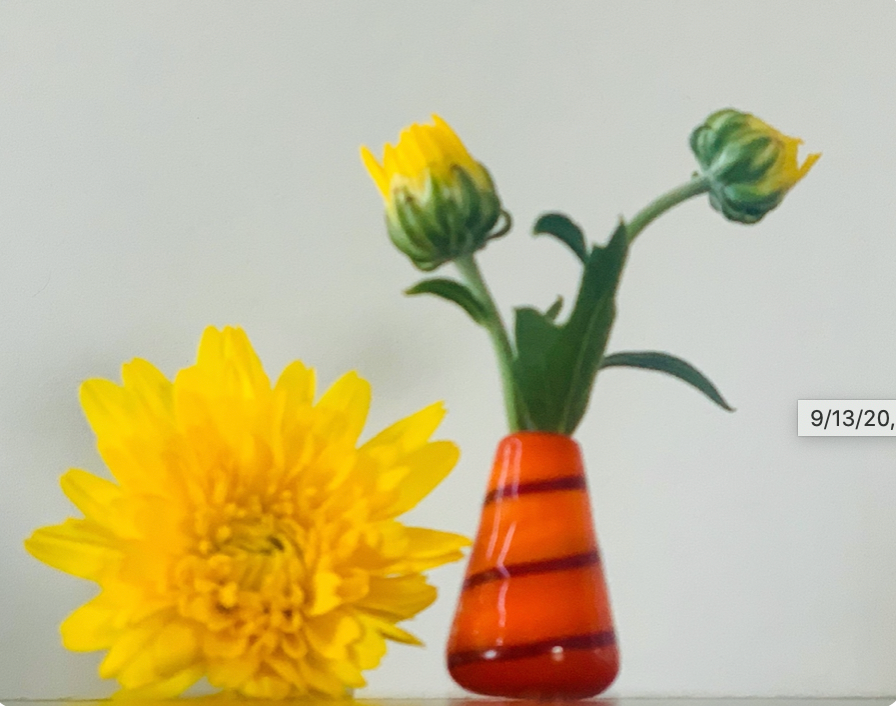 Custom Dandelion Vase - Orange & Red Stripe