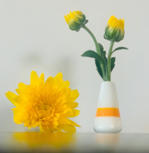 Custom Dandelion Vase - White with Orange Stripe