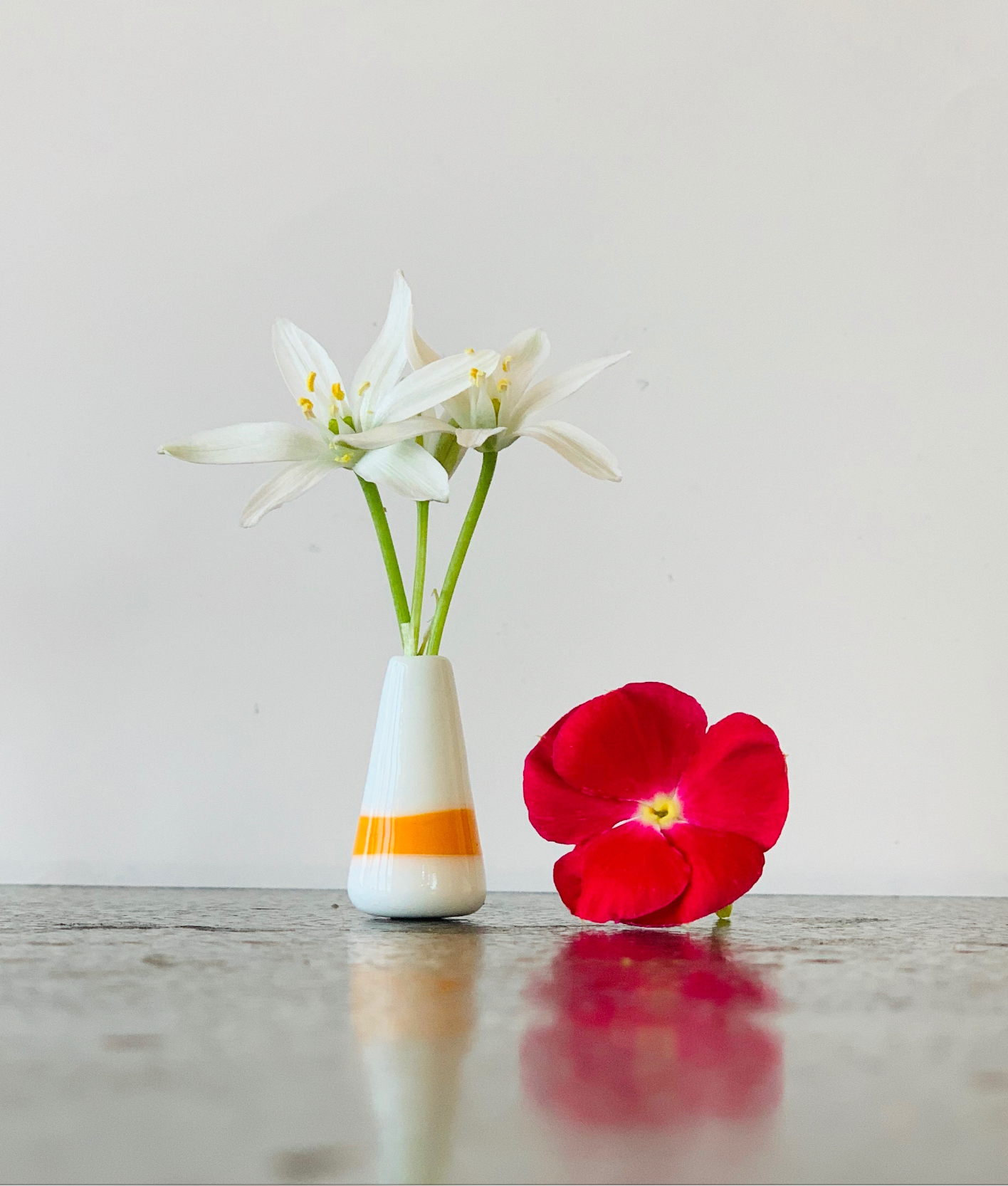 Custom Dandelion Vase - White and Orange